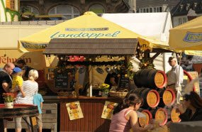food-apple-wine-festival-apfelwein-festival