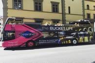I love Rome Gray Line Bus tours