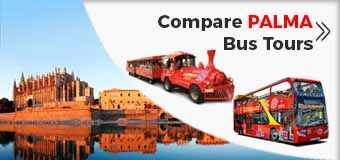 Palma De Mallorca Hop-on Hop-off City Sightseeing Bus