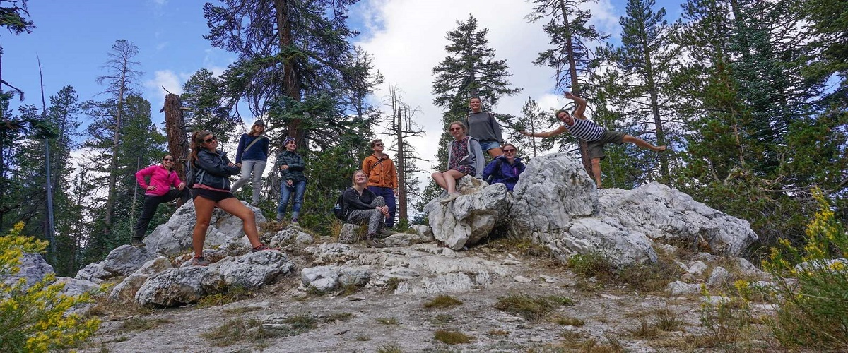 4 Day Sierra Nevada Tour of Yosemite and Tahoe from San Francisc