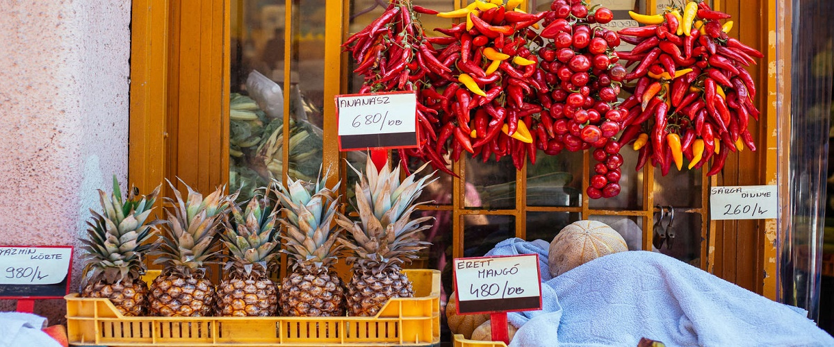 From Budapest: Culinary Tour