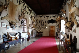From Prague: Trebíc and Telc UNESCO Day Trip