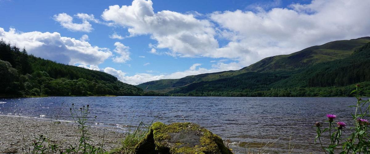 Loch Lomond & Whisky Distillery Half Day Tour from Glasgow