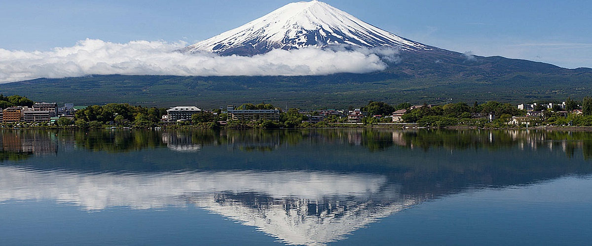 Mt Fuji Aokigahara Forest and Cave Exploring from Tokyo