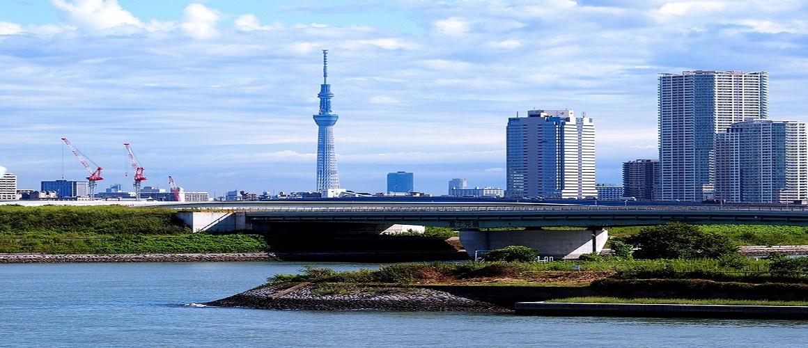Tokyo: Dynamic Tour of Tokyo Tower, River Cruise & Asakus
