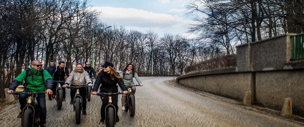 Vienna Woods Mountain Bike Tour