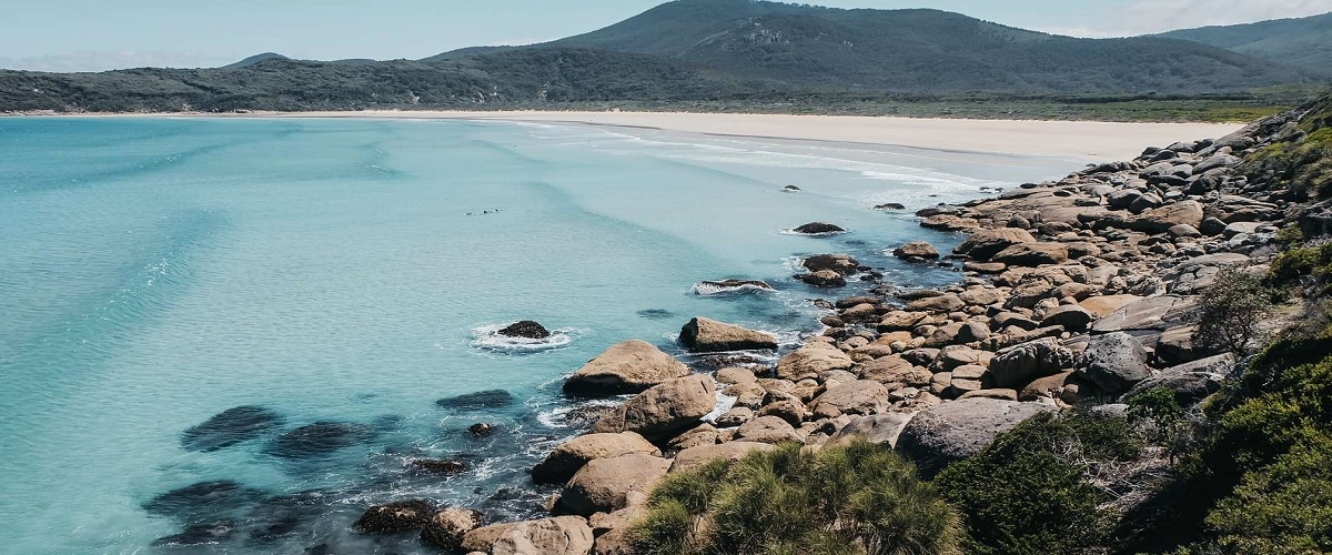 Wilsons Promontory Hiking Day Tour from Melbourne