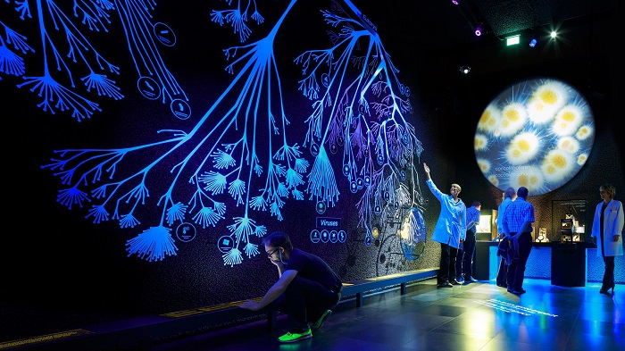 The Museum of Microbes, Amsterdam
