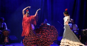Witness an Impressive Flamenco Dance Performance