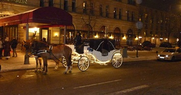 Go for a Romantic Carriage Ride