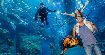 Experience Marine Life Up Close at the Lost Chambers Aquarium