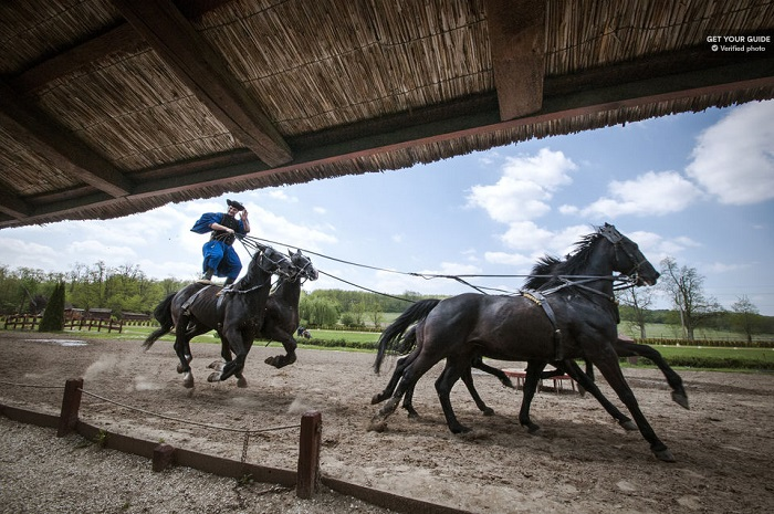 Baroque Palace and Horse Show Magic Hungary Tour Tickets