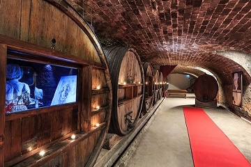 Cotes de Provence Wine Tour from Nice Tickets
