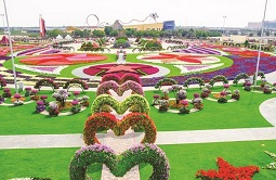 Dubai Flora and Fauna 4-Hour Tour Tickets