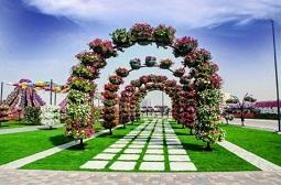 Dubai Miracle Garden Tickets Tickets
