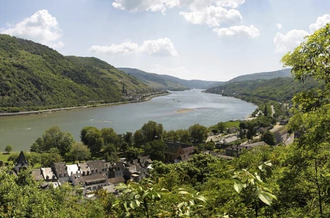 City Highlights Tour plus Rhine Valley Cruise and Wine Tasting Tickets