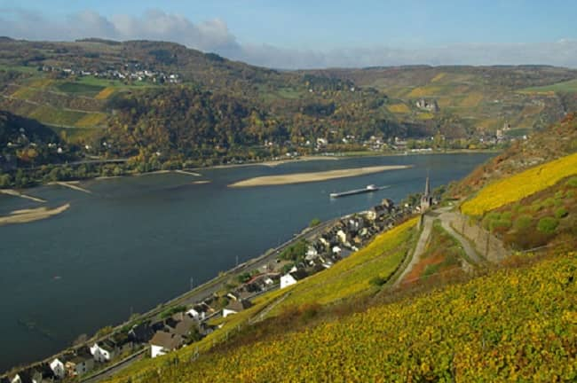 Day Trip down the Rhine with Wine Tasting Tickets