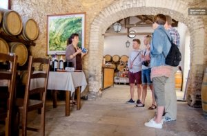 Arrabida and Sesimbra Day Trip with Wine Tasting Tickets