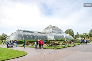 Kew Gardens and Palace Tickets Tickets