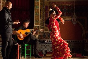 Best Flamenco Show at Torres Bermejas
