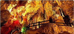 Malaga to Gibraltar Sightseeing Tour Day Trip Tickets