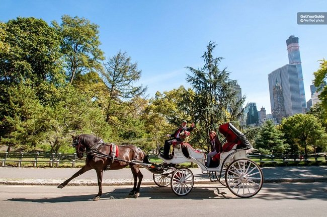 Central Park Horse and Carriage Ride Tickets