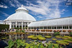 New York Botanical Garden Ticket Tickets