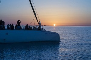 Half-Day Catamaran Excursion in Mallorca Tickets