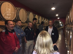 Best Mallorca's Winery Tour Tickets