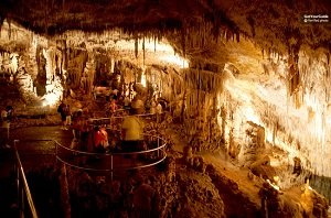 The Caves of Drach and Mallorca's East Full-Day Tour Tickets