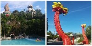 Best Loro Park and Siam Park Twin Ticket with Transfer to Loro Park