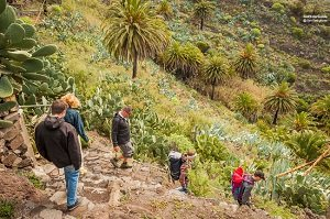 Tenerife Masca Gorge 1-Day Hiking Tour with Picnic Tickets