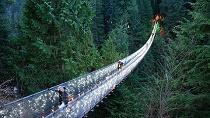 Vancouver City and Capilano Suspension Bridge Canyon Lights Tour Tickets