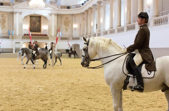 Spanish Riding School Guided Tour, Vienna Tickets