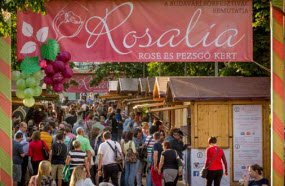 rosalia-ros-festival